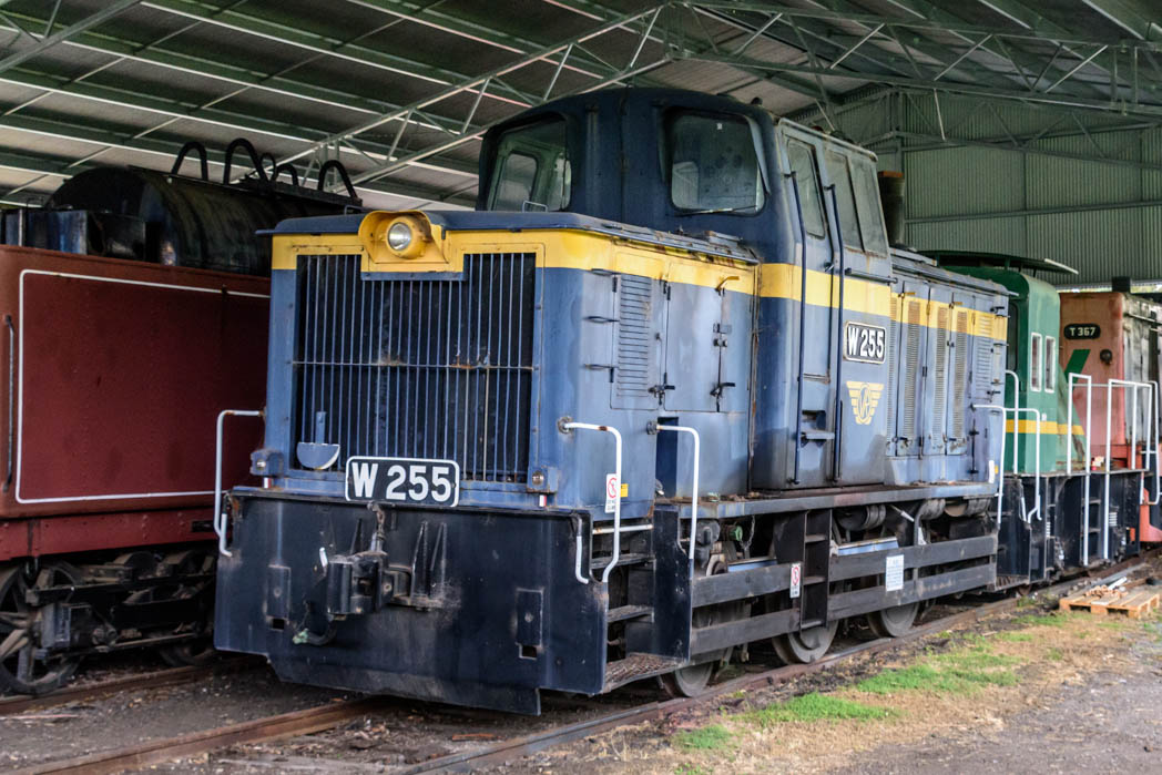 Blue and gold diesel locomotive numbered W 255